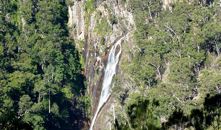 Carrai National Park - Accommodation Rockhampton