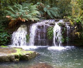Barrington Tops National Park Walks - Accommodation Rockhampton