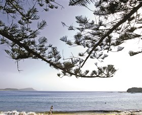 Terrigal Beach - Accommodation Rockhampton