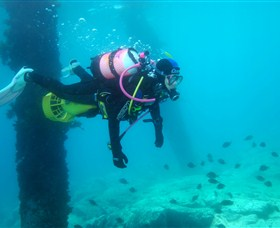 Shellharbour Scuba  Photography Centre - Accommodation Rockhampton