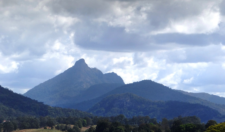 Wollumbin National Park - Accommodation Rockhampton