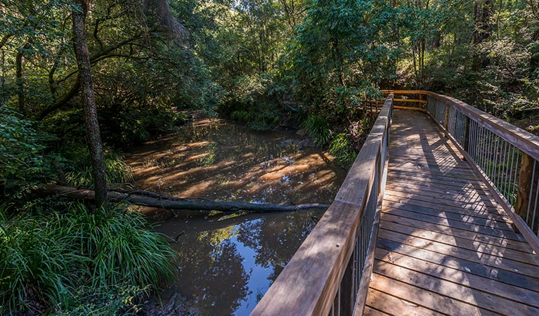 Ms Kellys walking track - Accommodation Rockhampton