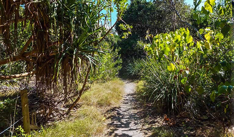 North Head walking track - Accommodation Rockhampton