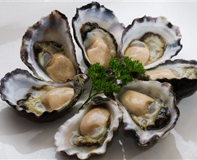 Tathra Oysters - Accommodation Rockhampton