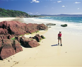 Pambula Beach - Accommodation Rockhampton