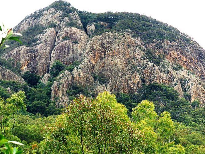 Mount Greville Track - Accommodation Rockhampton
