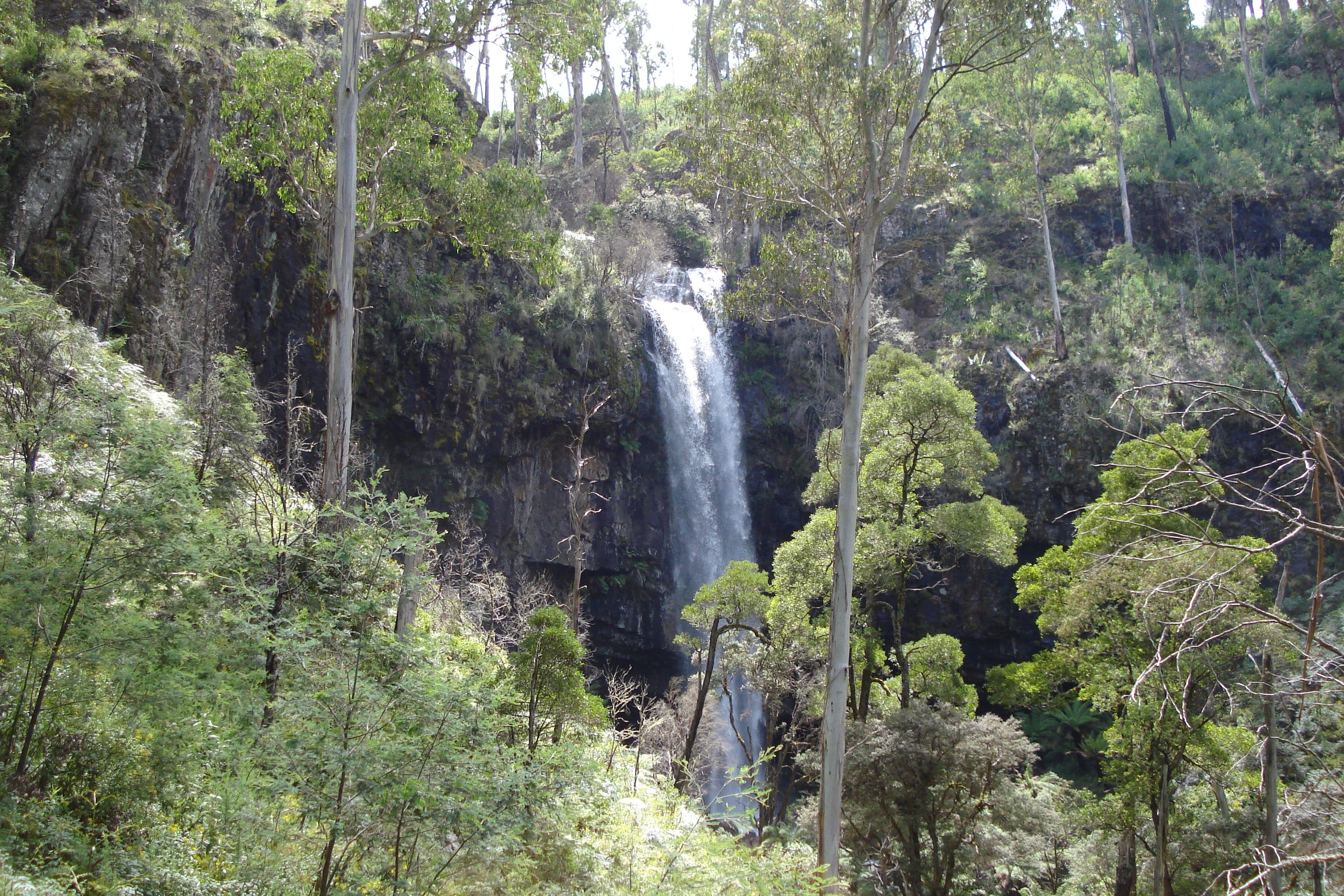 Bindaree Falls - Accommodation Rockhampton