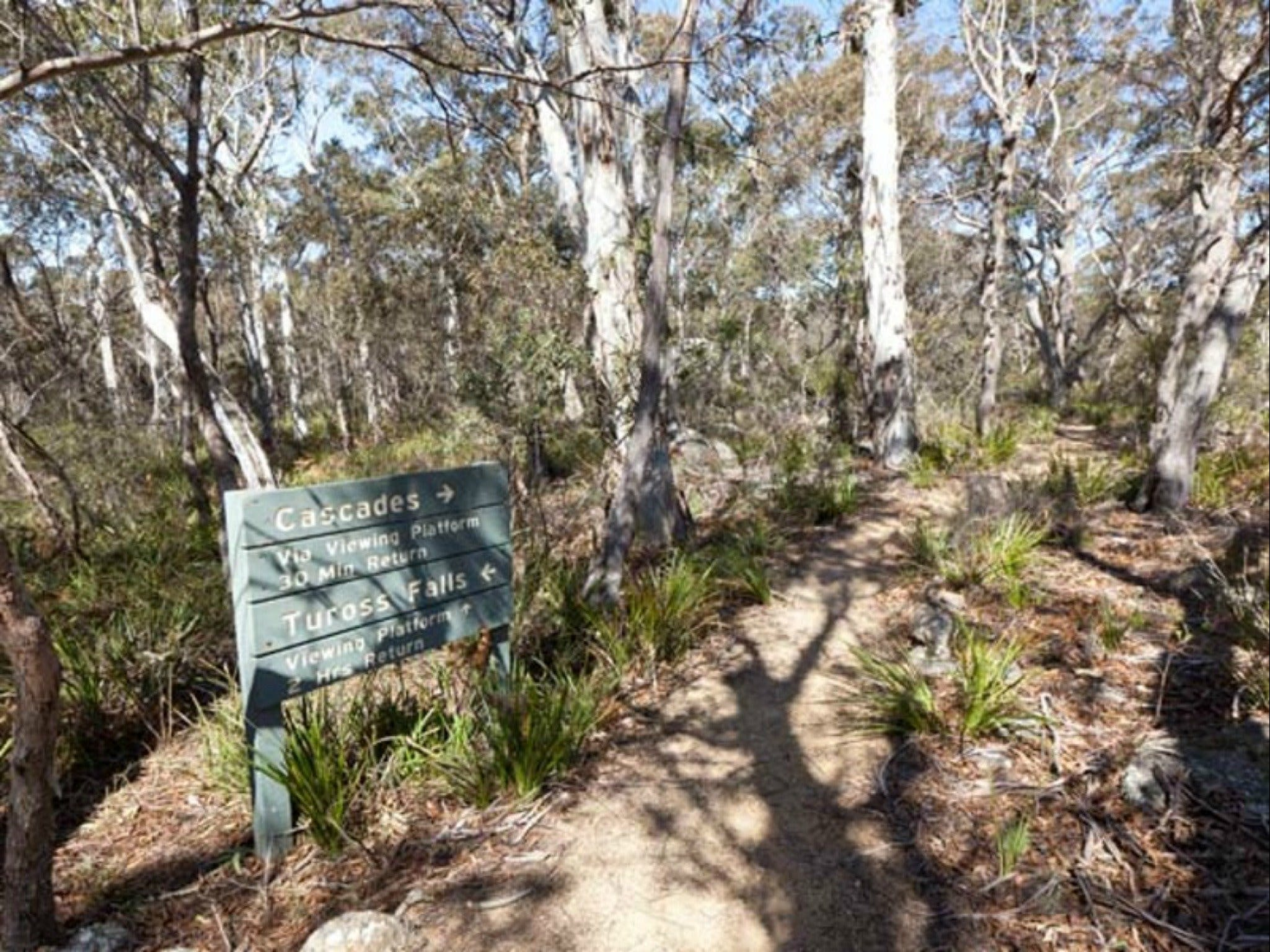 Cascades walking track and viewing platform - Accommodation Rockhampton