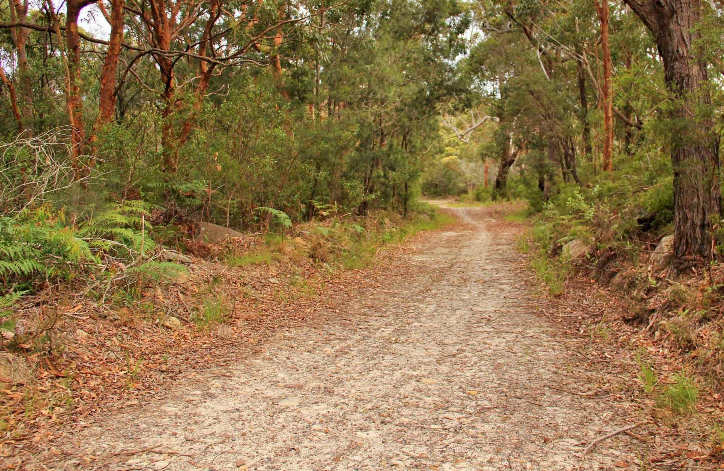 Daleys Point Walking Track - Accommodation Rockhampton