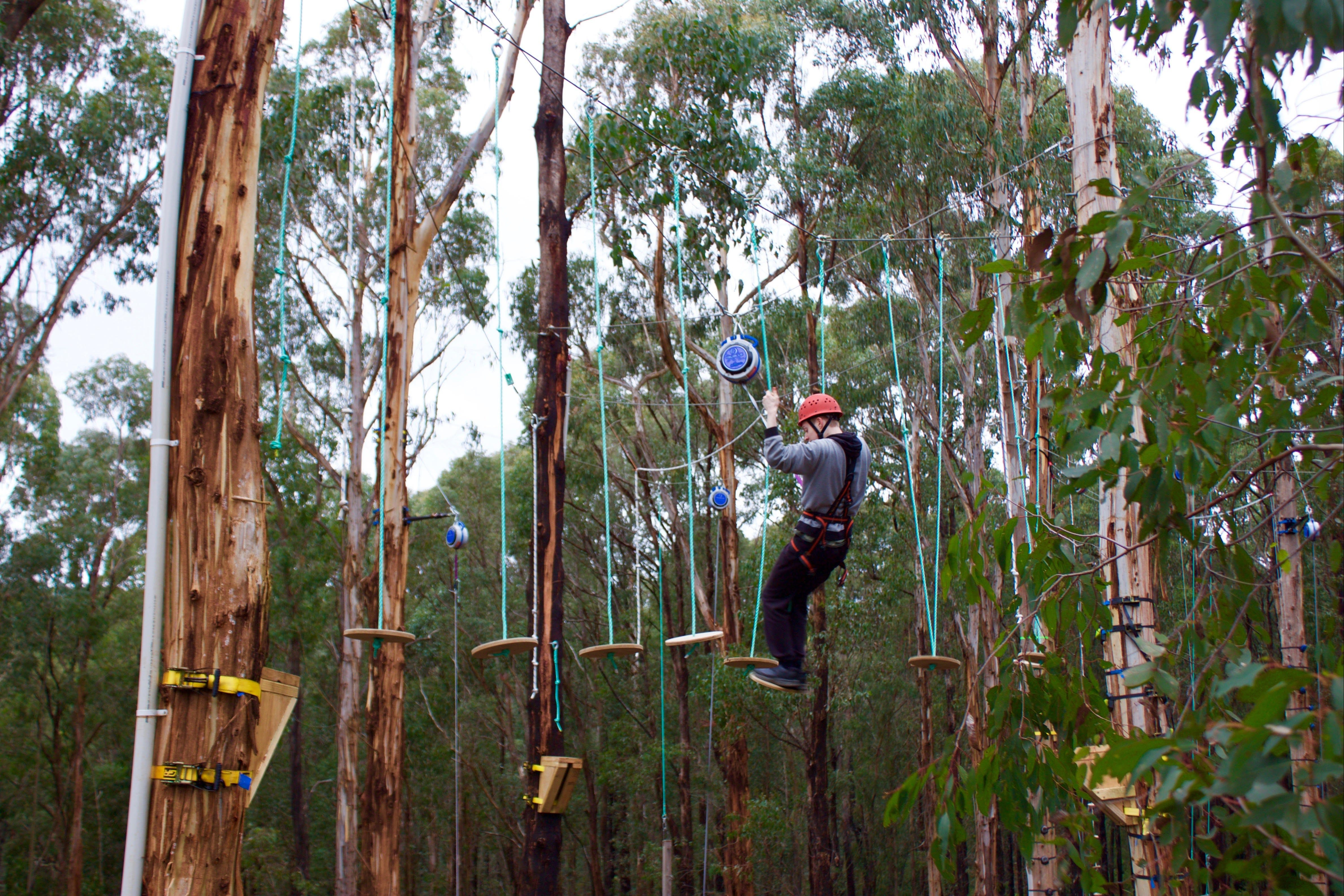Kinglake Forest Adventures - Accommodation Rockhampton