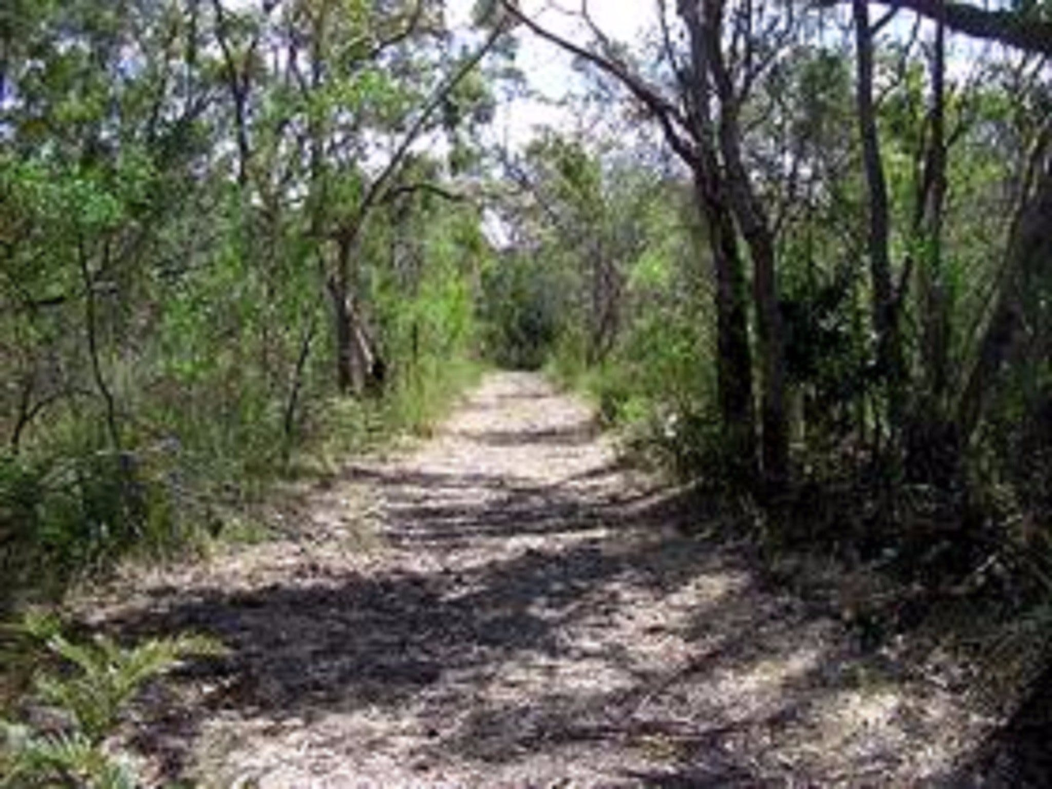 Lanky's Walk - Accommodation Rockhampton