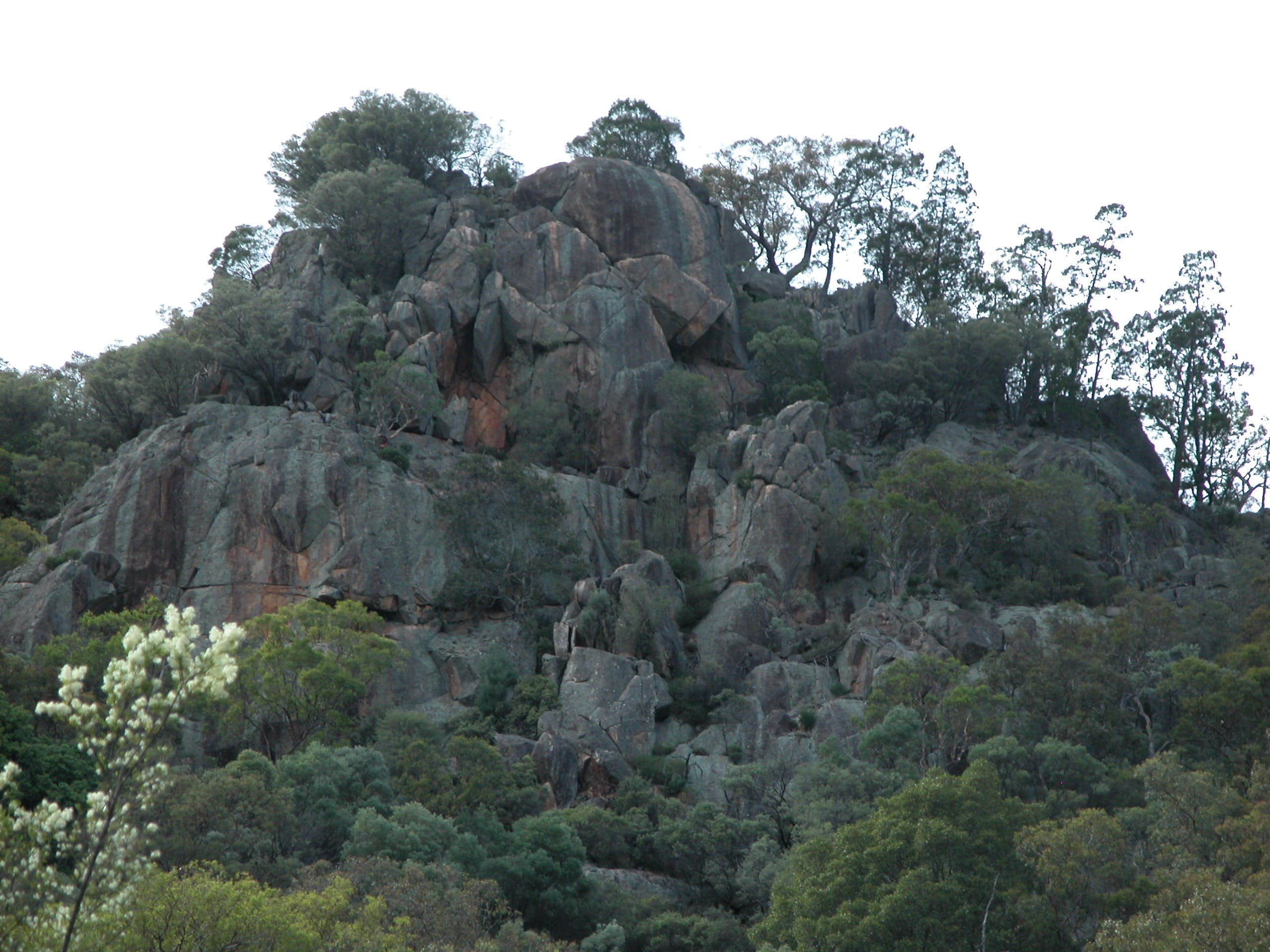 Mount Yarrowyck Nature Reserve - Accommodation Rockhampton