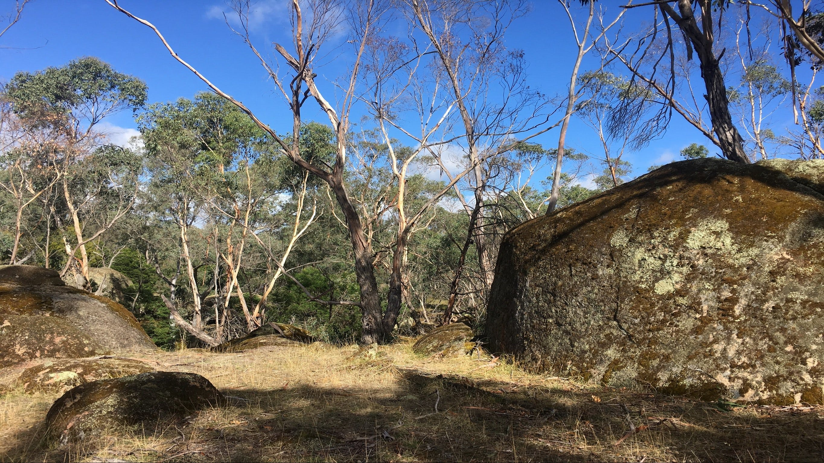 Bailey's Rocks - Dergholm State Park - Accommodation Rockhampton
