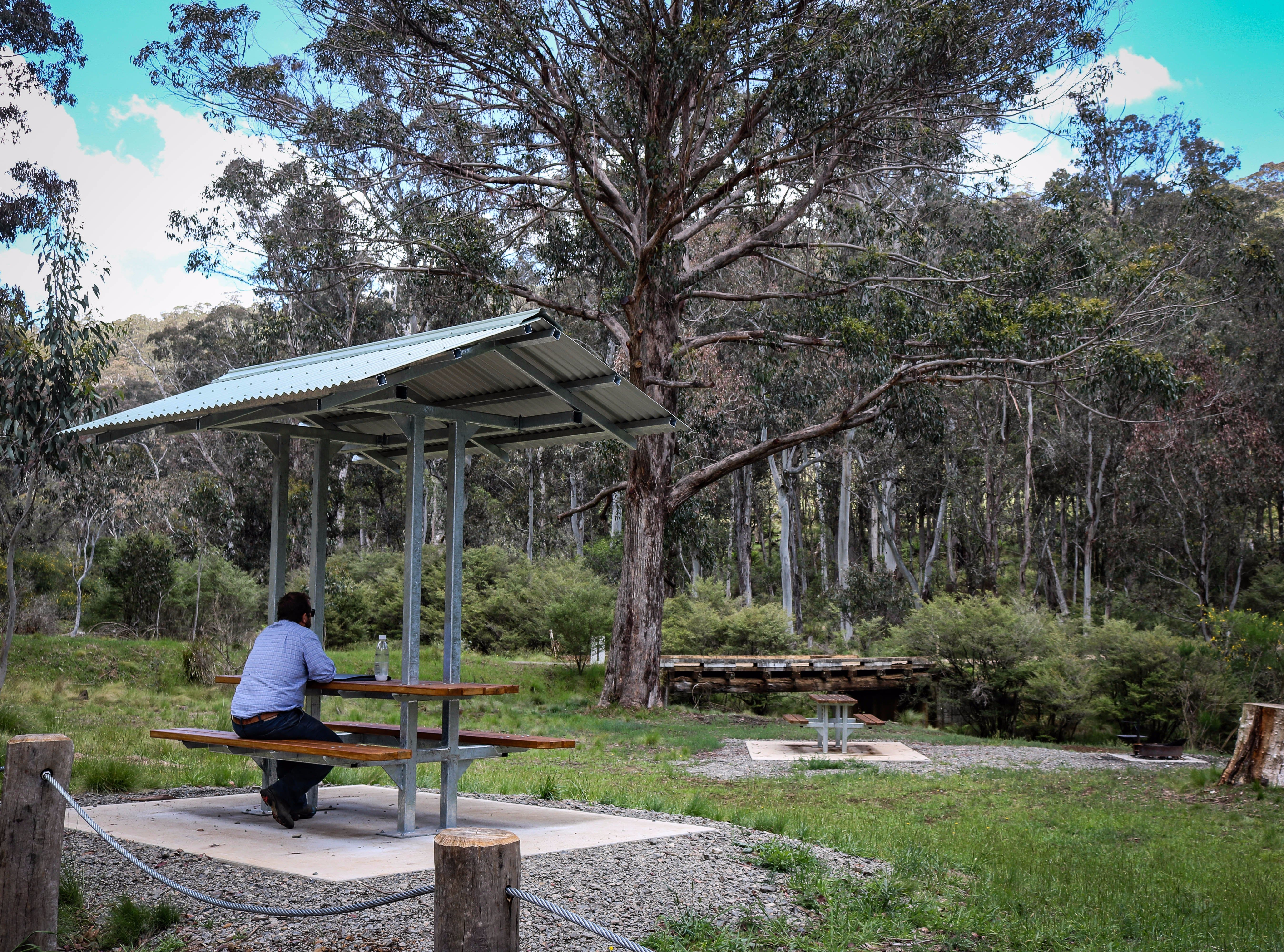 Barrington Tops State Forest - Accommodation Rockhampton