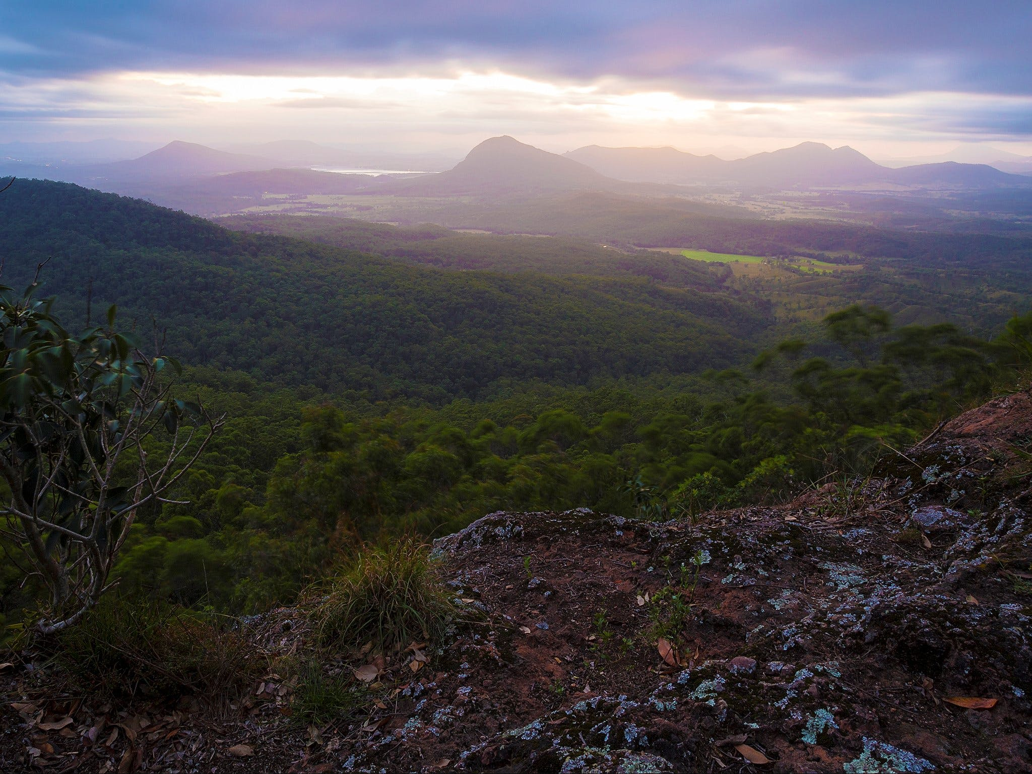 Cunninghams Gap and Spicers Gap Main Range National Park - Accommodation Rockhampton