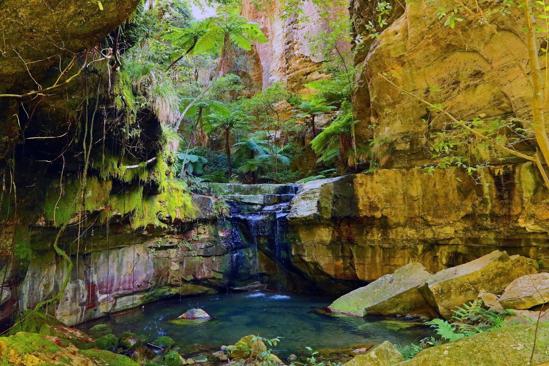 Glimpse of the Outback 5 Day Tour - Roma and Surrounds - Accommodation Rockhampton