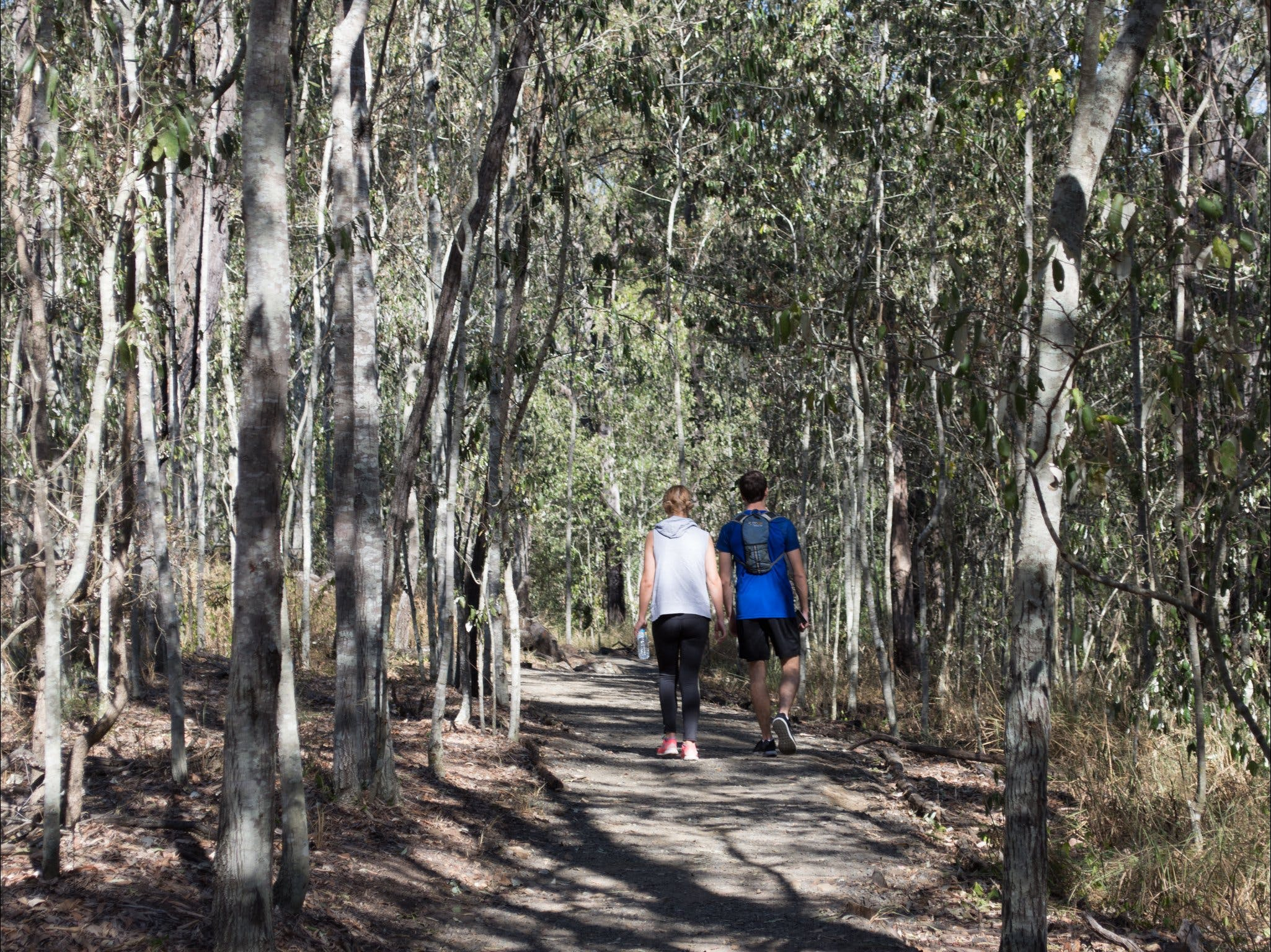 Six Mile Creek Bluff Lookout and Little White Rock Trails - Accommodation Rockhampton