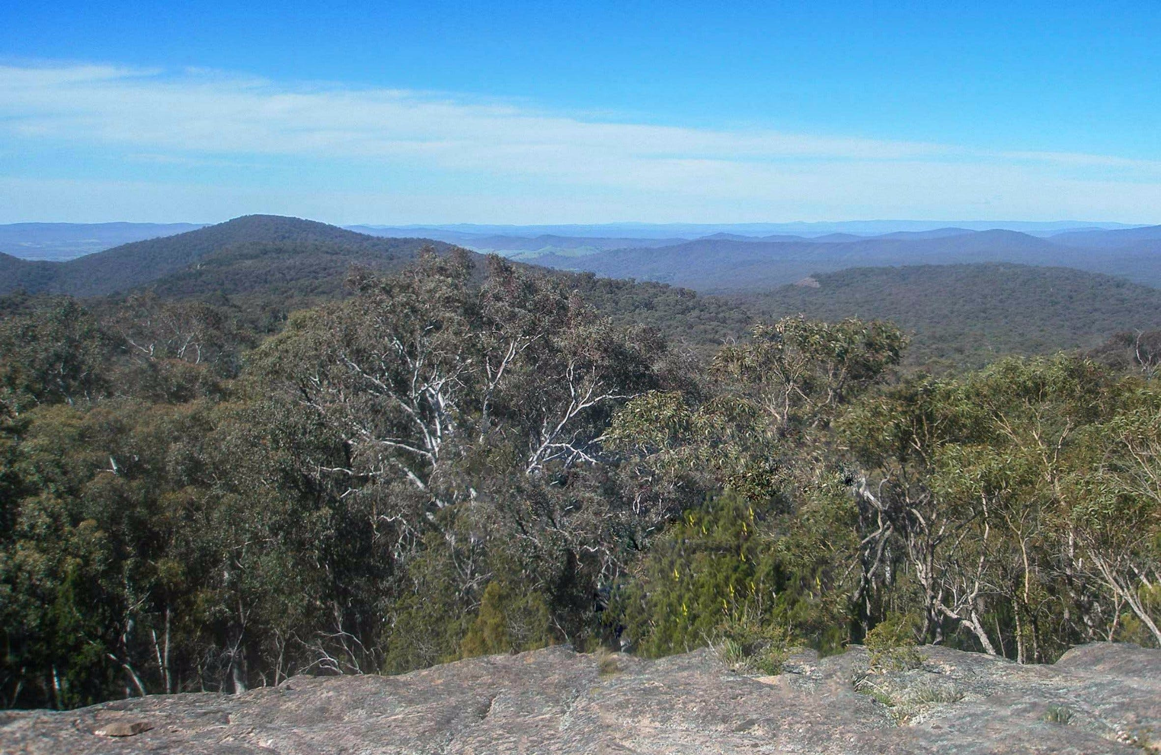 Woomargama National Park - Accommodation Rockhampton