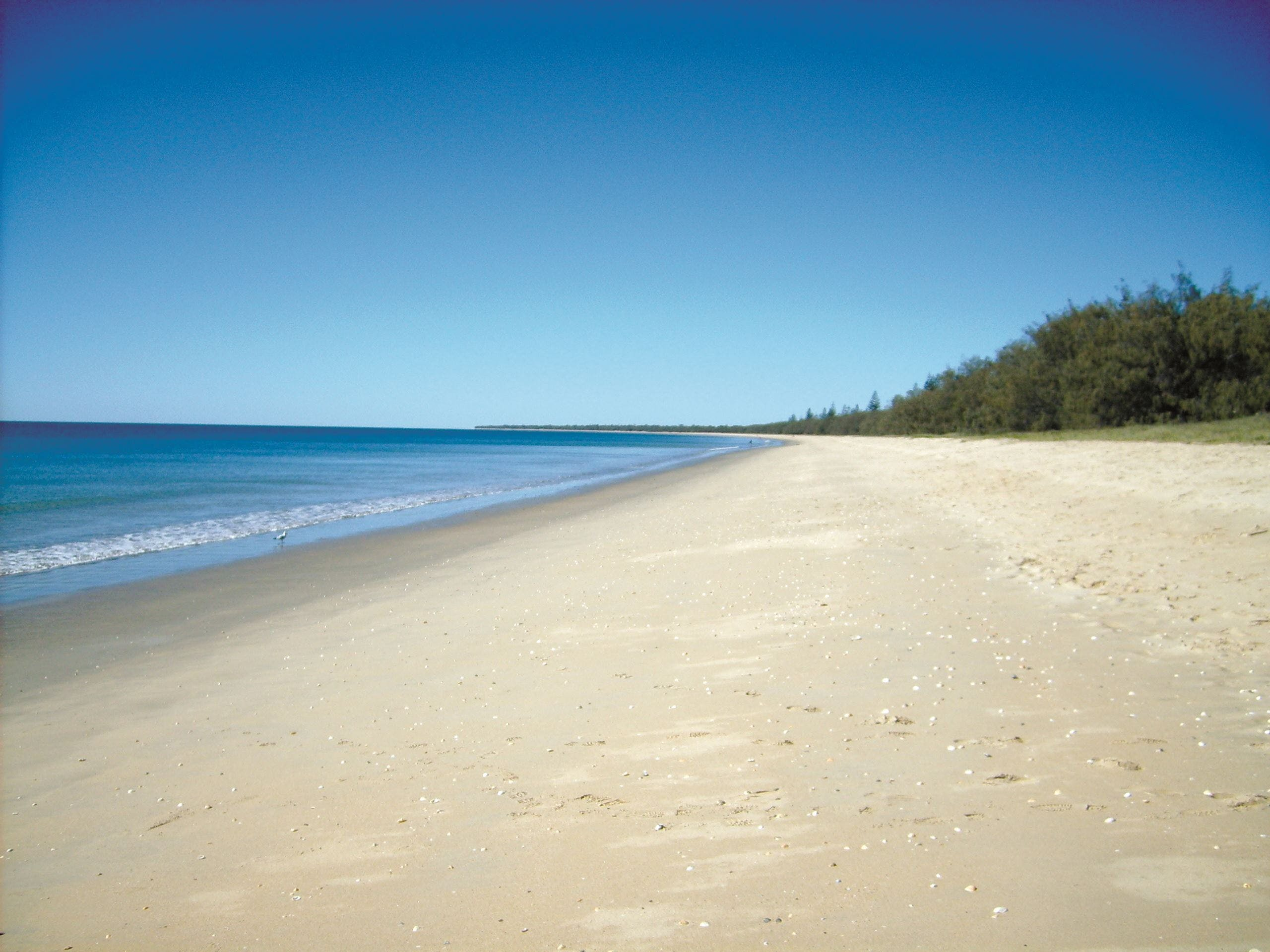 Coral Coast Pathways Woodgate Beach Section - Accommodation Rockhampton