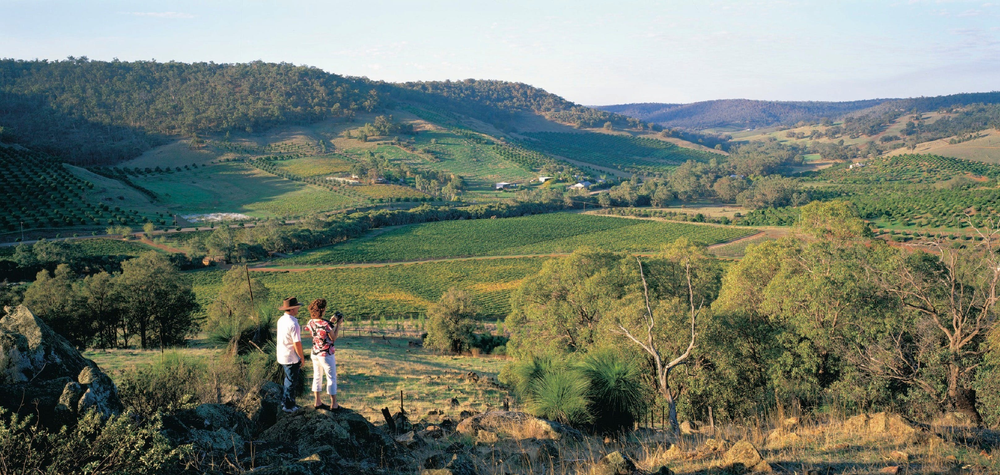 Farm Flavour Trail Chittering Valley - Accommodation Rockhampton