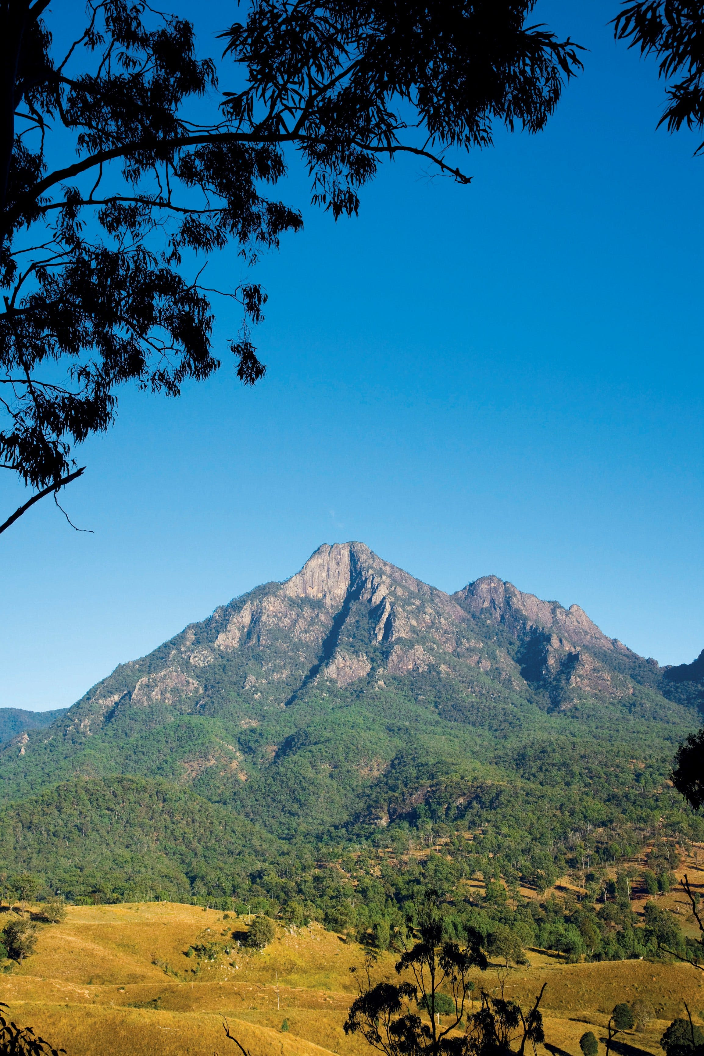 Lower Portals track Mount Barney National Park - Accommodation Rockhampton