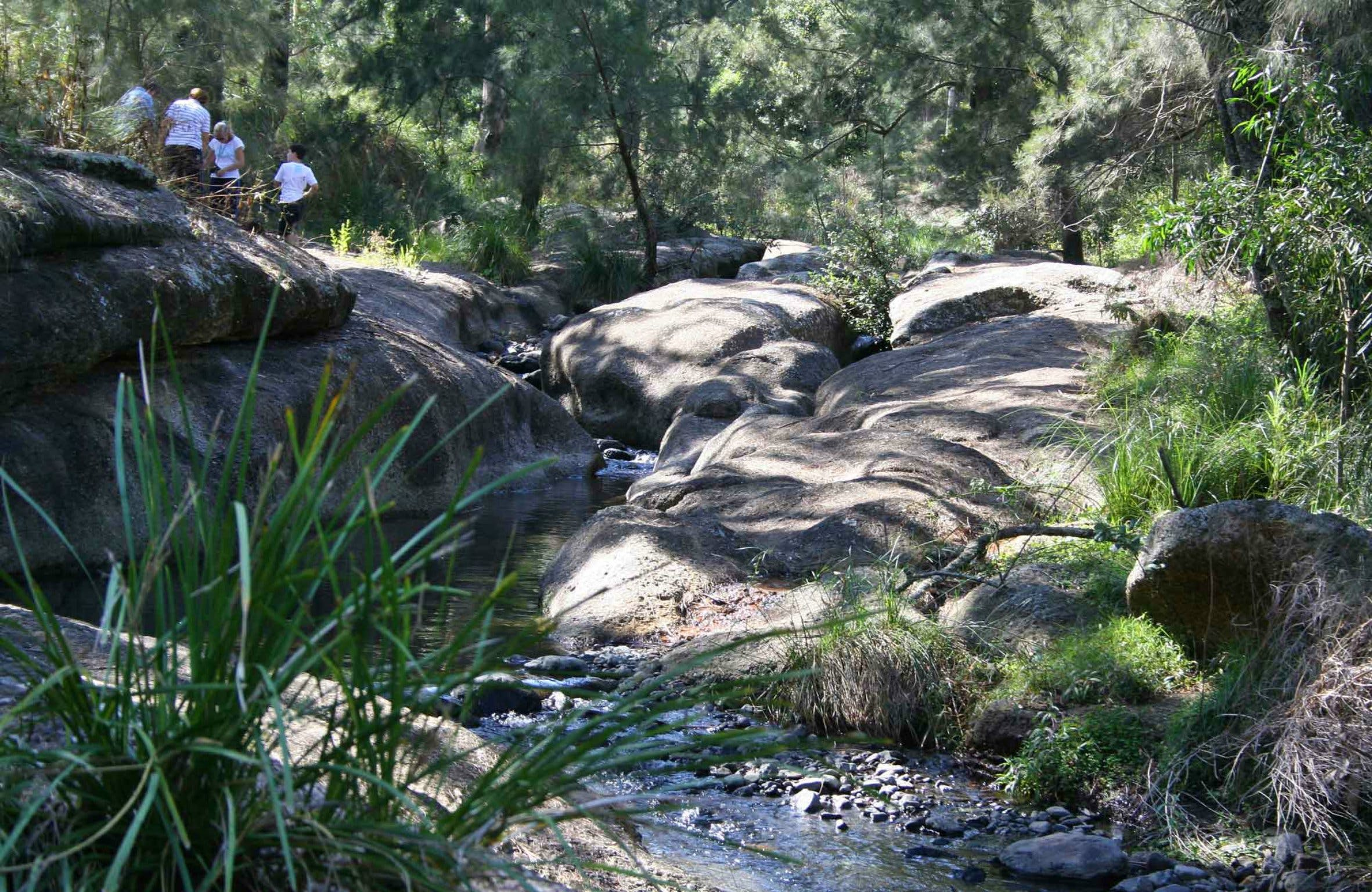 Towarri National Park - Accommodation Rockhampton