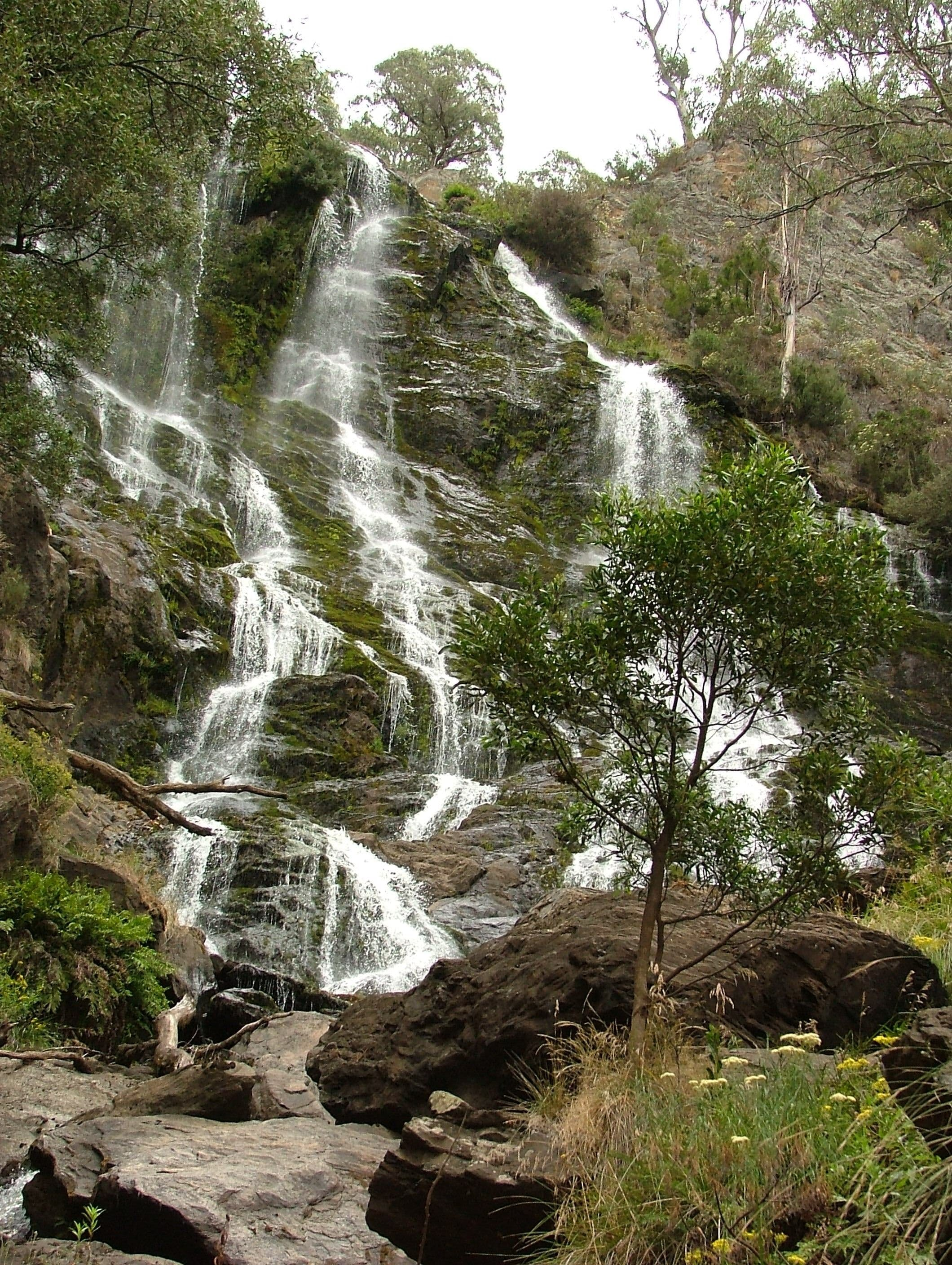 Buddong Falls Walking Track - Accommodation Rockhampton