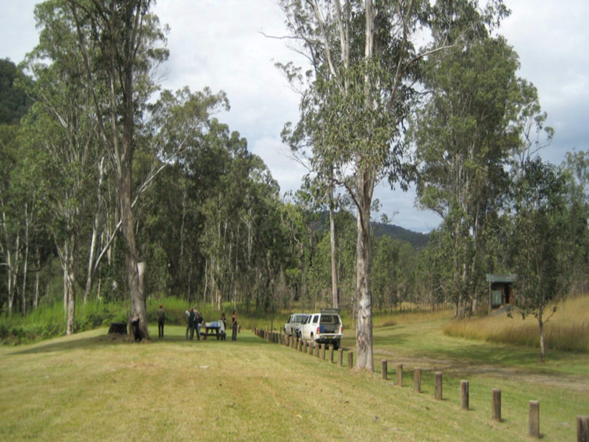 Chaelundi National Park - Accommodation Rockhampton