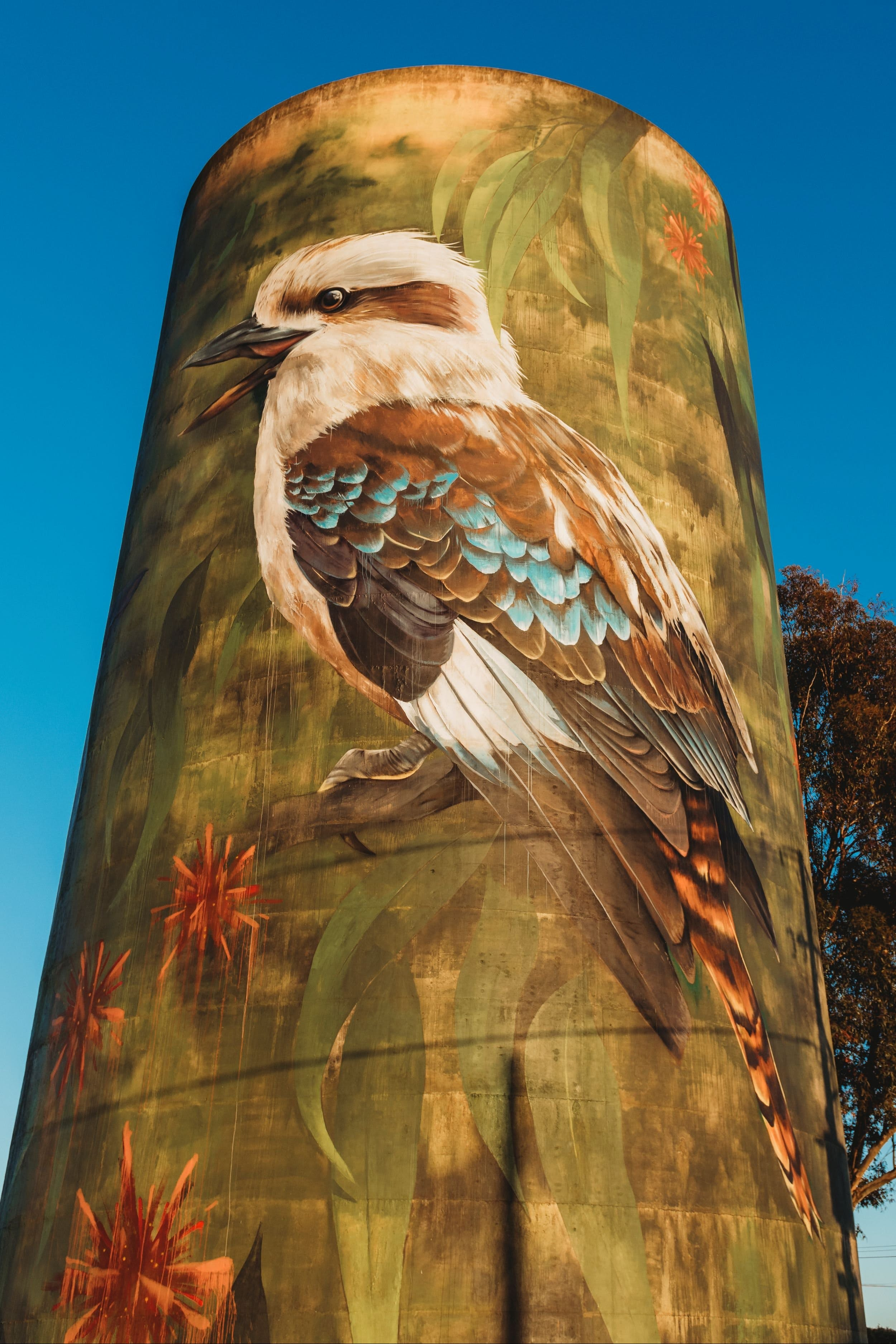 Deniliquin Water Tower Mural - Accommodation Rockhampton