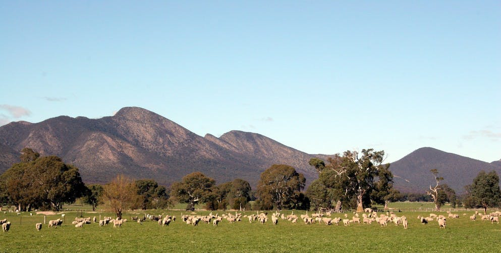 Grampians - Accommodation Rockhampton