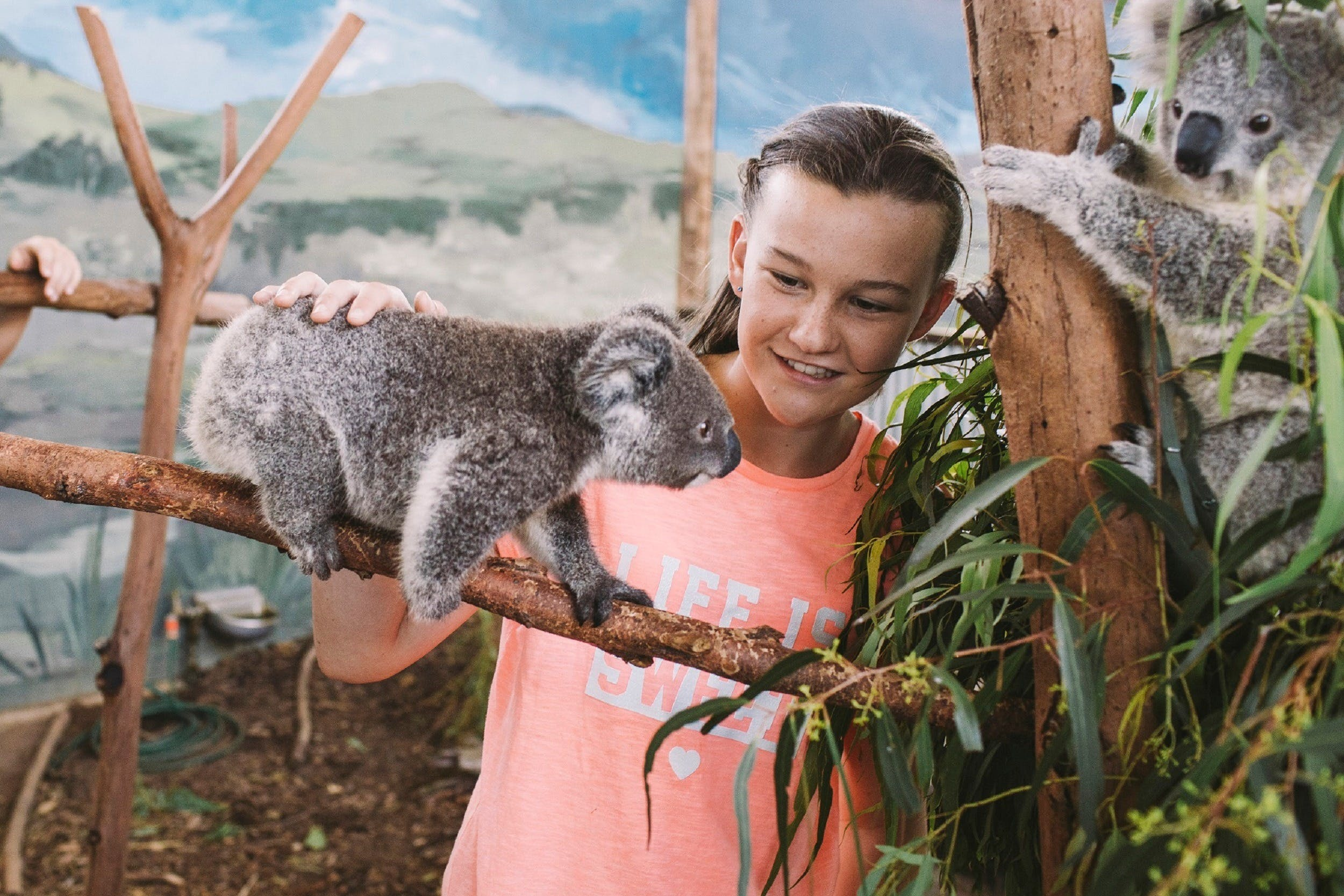 Oakvale Wildlife Park - Accommodation Rockhampton