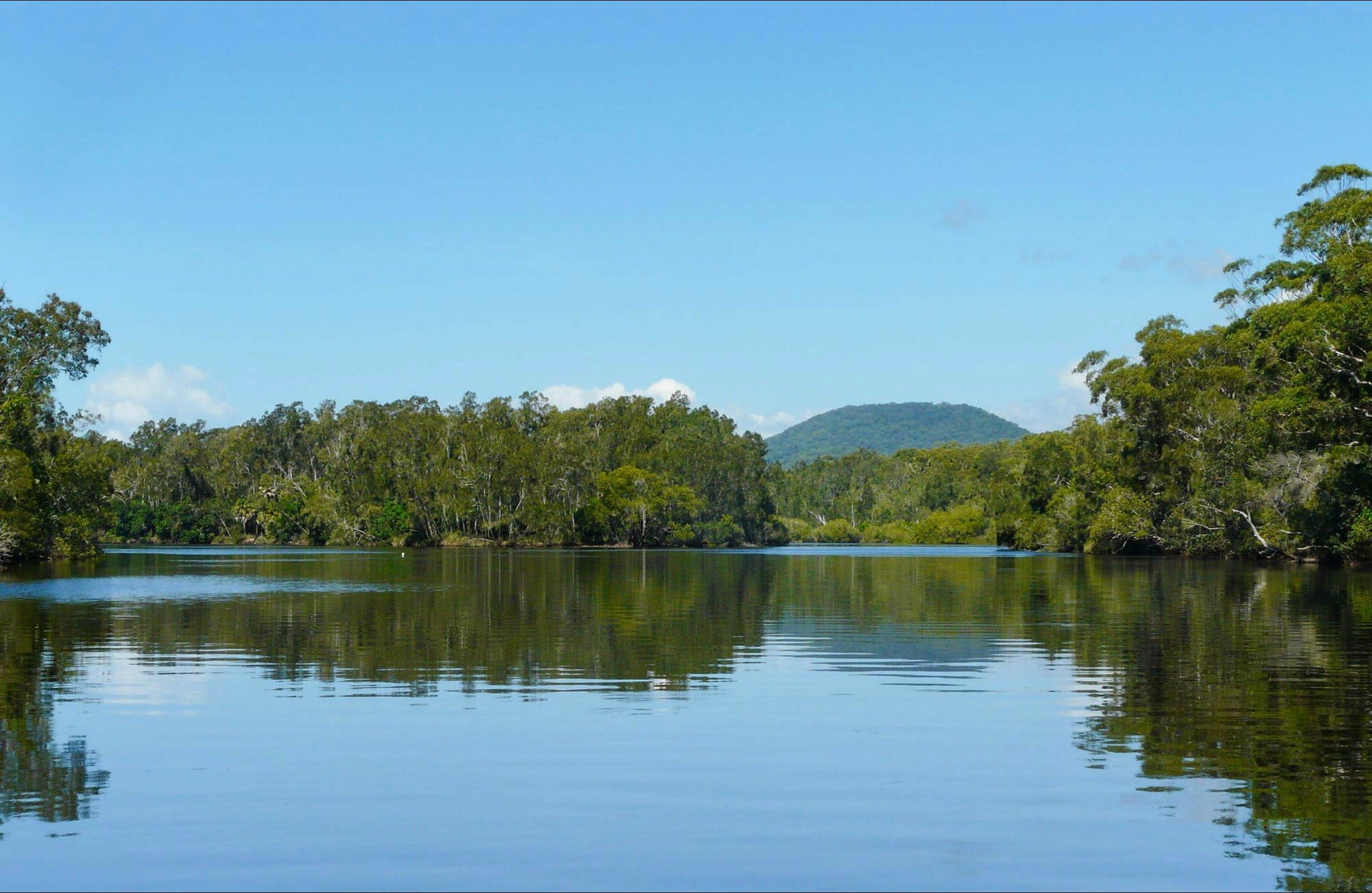 Warrell Creek - Accommodation Rockhampton