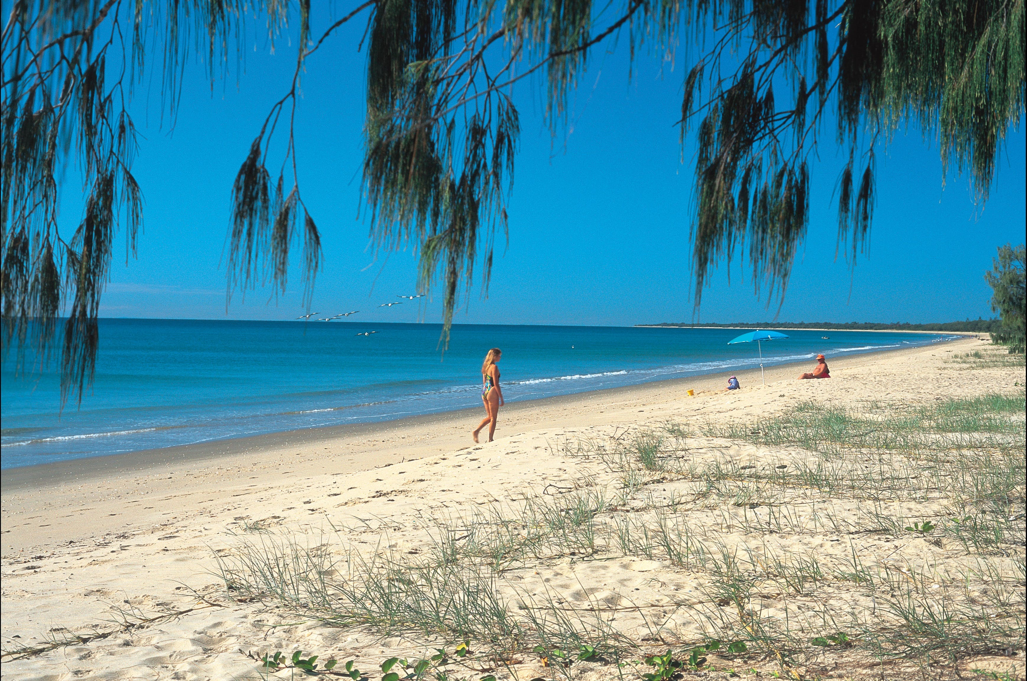 Woodgate Beach Park and Playground - Accommodation Rockhampton