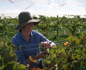 Kingsdale Wines - Accommodation Rockhampton