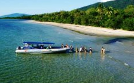 Ocean Safari - Accommodation Rockhampton