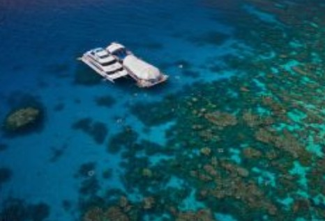 Great Adventures Reef and Green Island Cruises - Accommodation Rockhampton