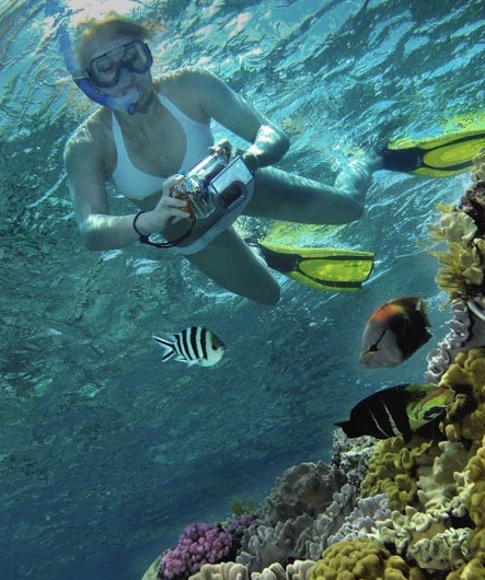 Calypso Reef Charters - Accommodation Rockhampton