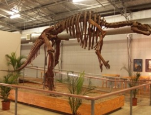 Australia's Dinosaur Trail - Accommodation Rockhampton