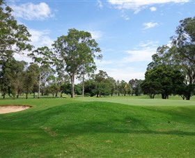 Singleton Golf Club - Accommodation Rockhampton