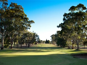 Loxton Golf Club - Accommodation Rockhampton