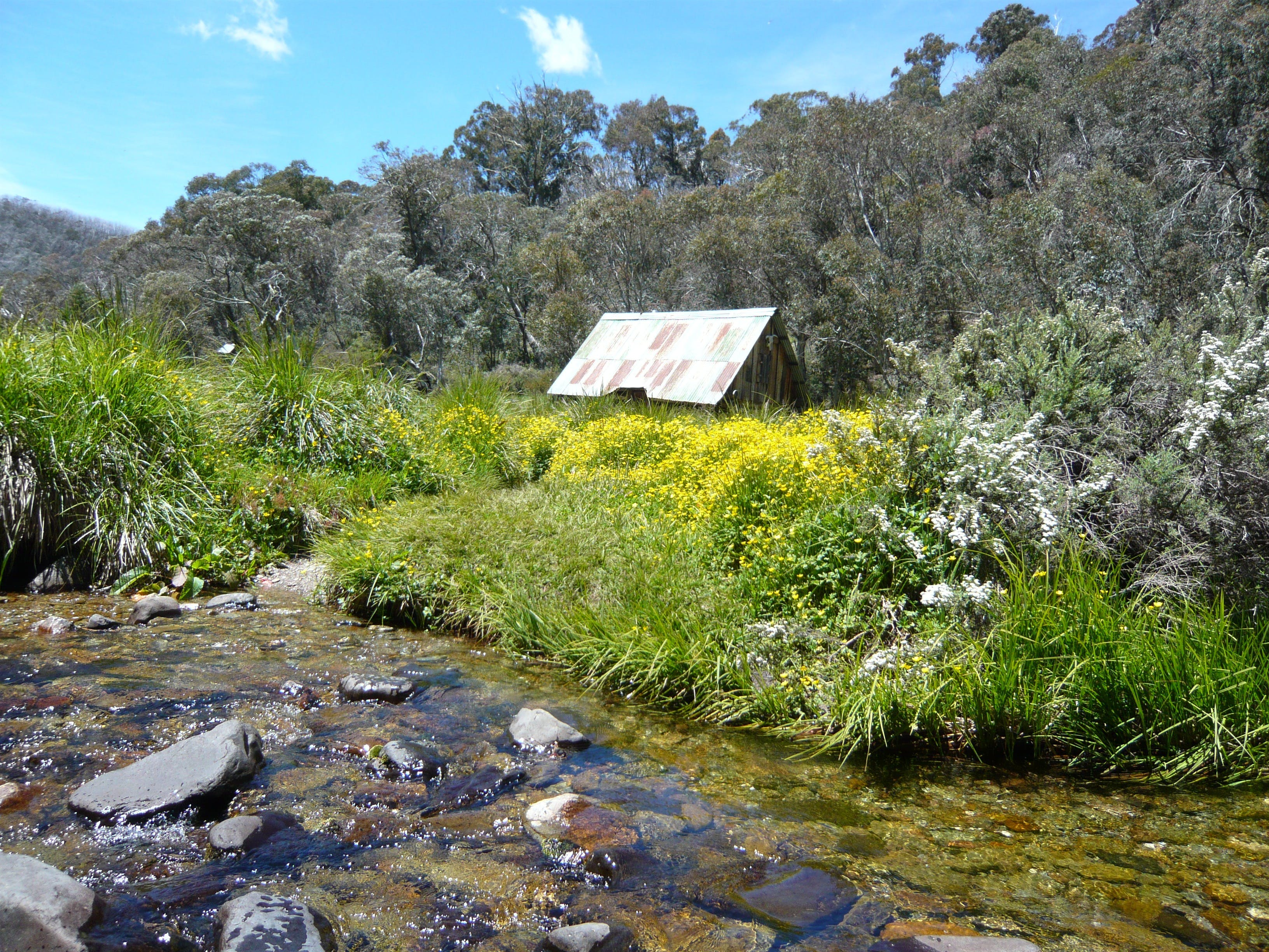Hedonistic Hiking's Falls Creek to Hotham - Accommodation Rockhampton