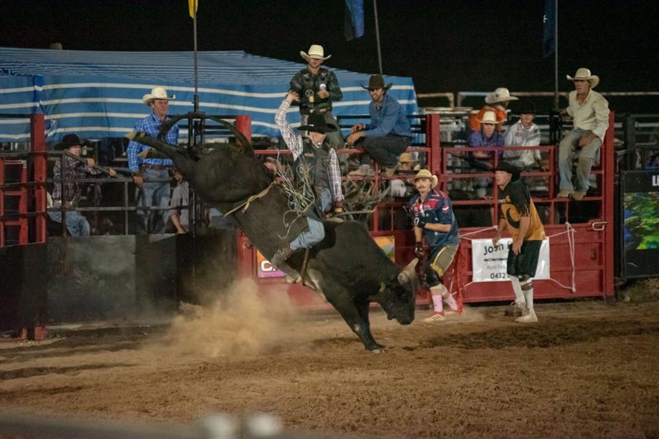 Black Opal Bull and Bronc Ride - Accommodation Rockhampton