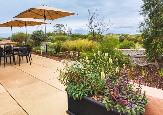 Arid Lands Botanic Garden Cafe - Accommodation Rockhampton