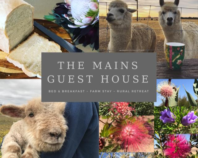 The Mains Guest House - Accommodation Rockhampton