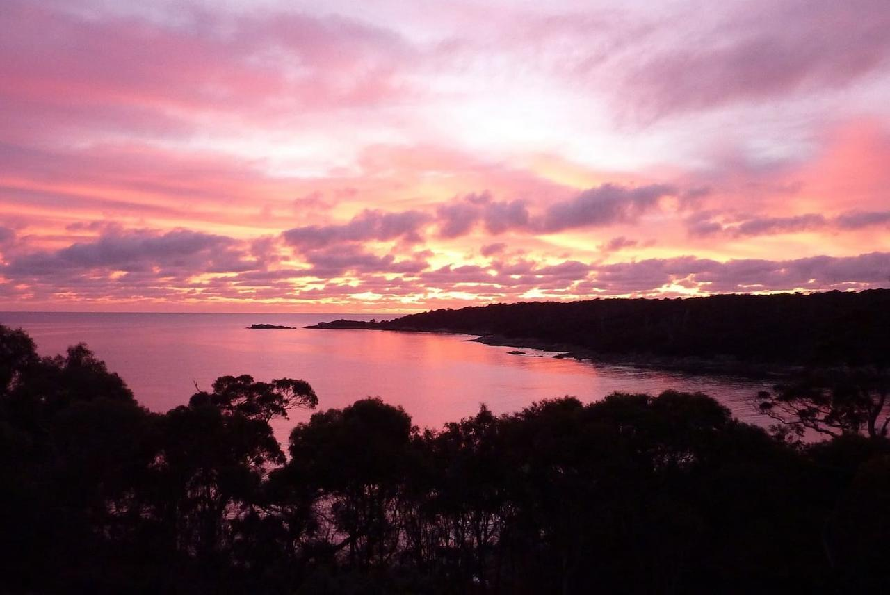 THE LOFT  Bay of Fires Seascape - Accommodation Rockhampton
