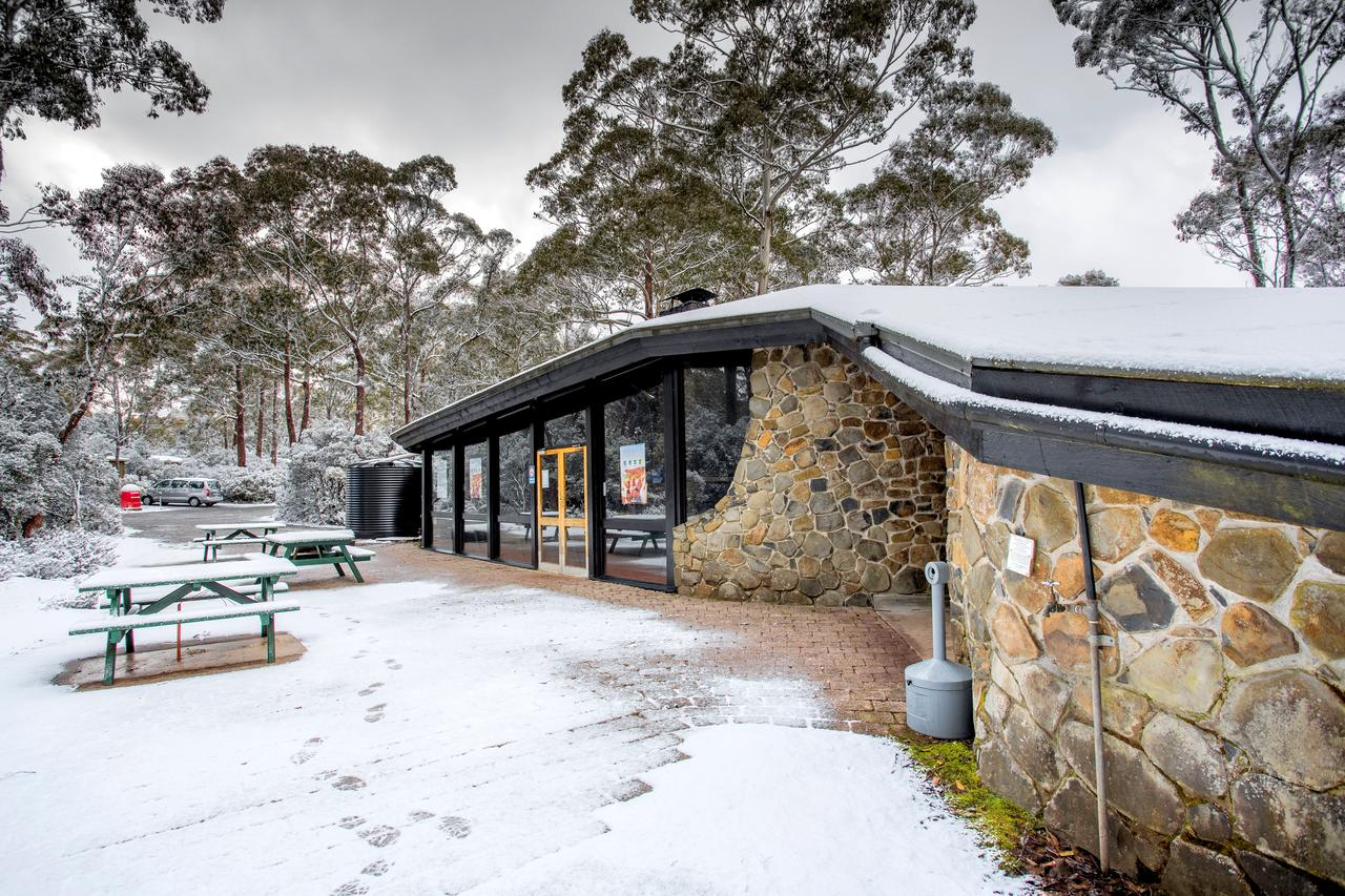 Discovery Parks  Cradle Mountain - Accommodation Rockhampton