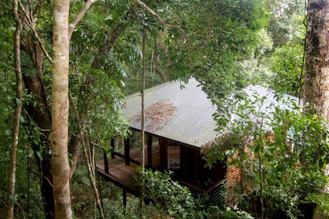 Cairns Reef  Rainforest BB - Accommodation Rockhampton